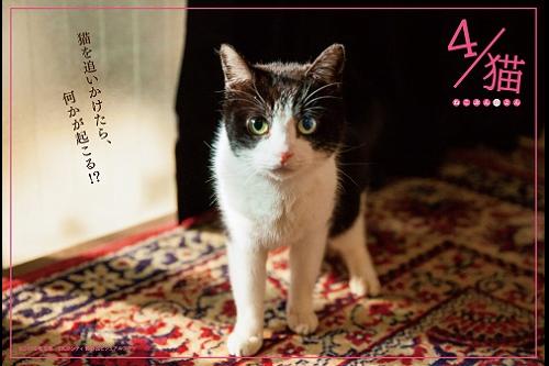 【プレゼント】『人生の約束』一般試写会に【25組50名様】をご招待!