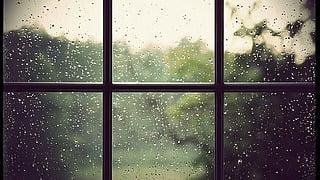 雨の日を楽しみに!のんびりお家で見たい映画5選