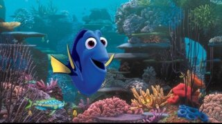 findingdory_500