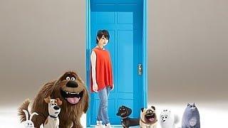 【映像解禁】家入レオ、映画『ペット』のイメージソングに決定!その理由は…