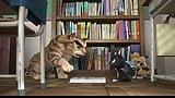 【映画動員ランキング】『シン・ゴジラ』が1位をキープ!あの作品は何位?(8/6~8/7)