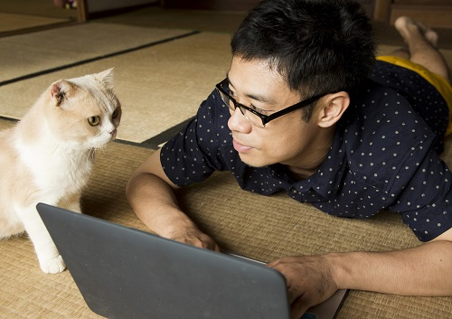 2月22日は猫の日!猫好きの心を掴んで離さない!カワイイ猫が出演する映画