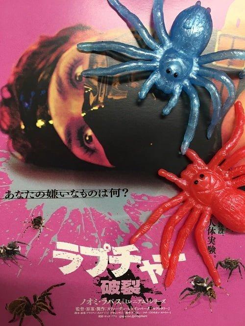 【プレゼント】異色SMホラー『ラプチャー 破裂』の「映画オリジナルカード&ぺったんこ蜘蛛」セットを【5名様】に!