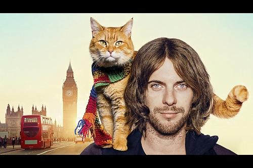 【プレゼント】青年と野良猫、感動の実話物語!『ボブという名の猫 幸せのハイタッチ』一般試写会に【5組10名様】をご招待!