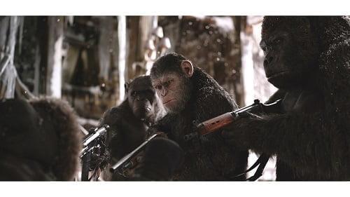 あなたは、最後を見届ける最初の人類になる。映画『猿の惑星:聖戦記(グレート・ウォー)』