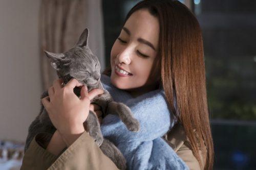 沢尻エリカ、アラサー女性を熱演!吉沢亮の切ない表情にも注目!映画『猫は抱くもの』予告映像解禁♡