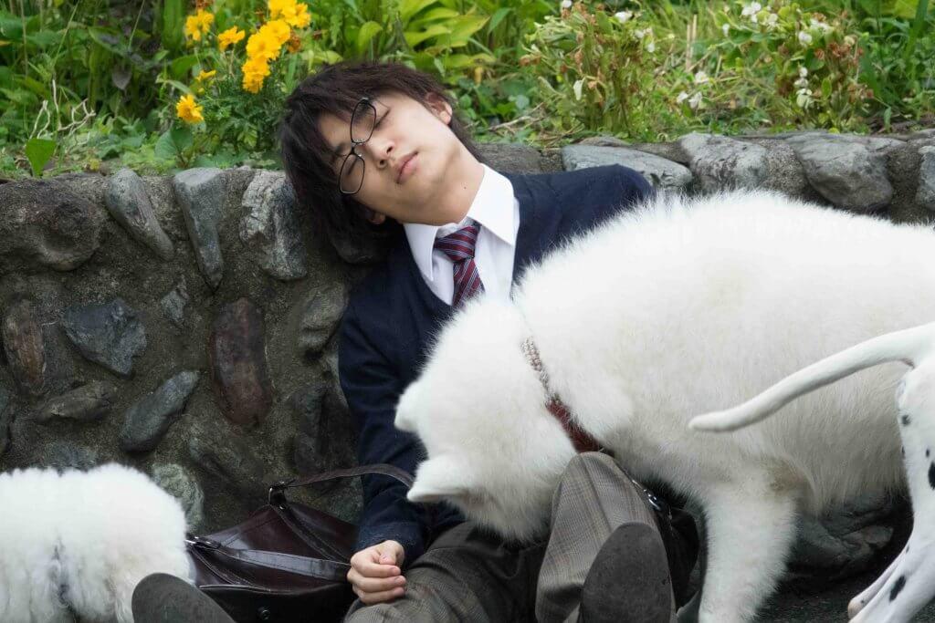 もふもふのワンちゃんをよしよしする姿に胸キュン♡映画『兄友』松岡広大のメイキング映像解禁!