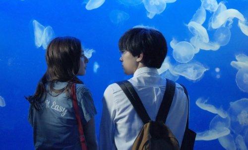 """吉沢亮×新木優子、""""江の島""""でにっこり笑顔の仲良しデート♡映画『あのコの、トリコ。』水族館でのデートショット解禁!"""