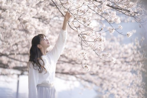【プレゼント】映画『雪の華』スペシャルプレゼント第1弾!ジャパンプレミアに【5組10名様】をご招待!