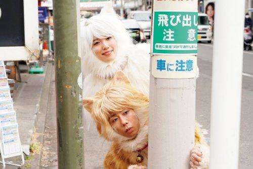 「寿々男のように、みんなのことが大好きだった」 映画『トラさん~僕が猫になったワケ~』北山宏光インタビュー