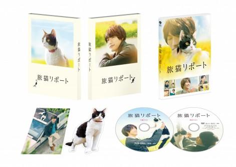 福士蒼汰ら、キャストの笑顔が満載!映画『旅猫リポート』豪華版特典映像ダイジェスト公開