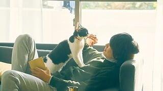 サブ1_「旅猫リポート」
