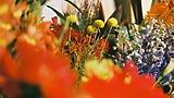 田中圭主演『mellow』を彩る香内斉のフラワーアート♡伊勢丹新宿店とのコラボレーション決定!