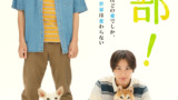 映画『犬部!』公開日7月22日(木・祝)に決定&大切な相棒への愛があふれるティザービジュアル解禁!映画主題歌はNovelbrightの書き下ろしに決定!